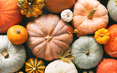 What fall recipe should you make?